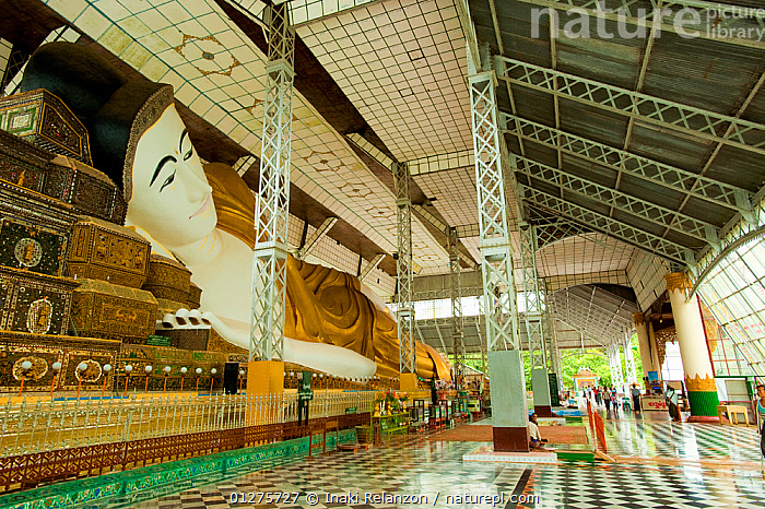 Shwethalyaung Buddha, one of the biggest reclining  Buddas. Bago, Myanmar /  Burma.  August 2009  ,  ASIA,BUDDHISM,BUILDINGS,BURMA,ENORMOUS,INDOORS,LARGE,PEOPLE,RELIGIONS,SOUTH EAST ASIA,STATUES,TEMPLES  ,  Inaki Relanzon