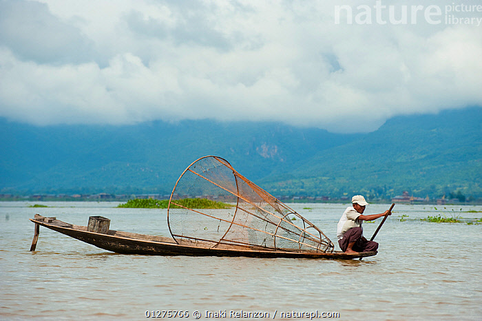 Traditional fisherman, with nets. These fishermen row their boats using their feet. Inle Lake, Shan State, Myanmar, Burma August 2009  ,  ASIA,BURMA,CATCH,CULTURES,FISHING,INDUSTRY,LAKES,LANDSCAPES,SOUTH EAST ASIA,TRADITIONS,WATER,WORKING  ,  Inaki Relanzon