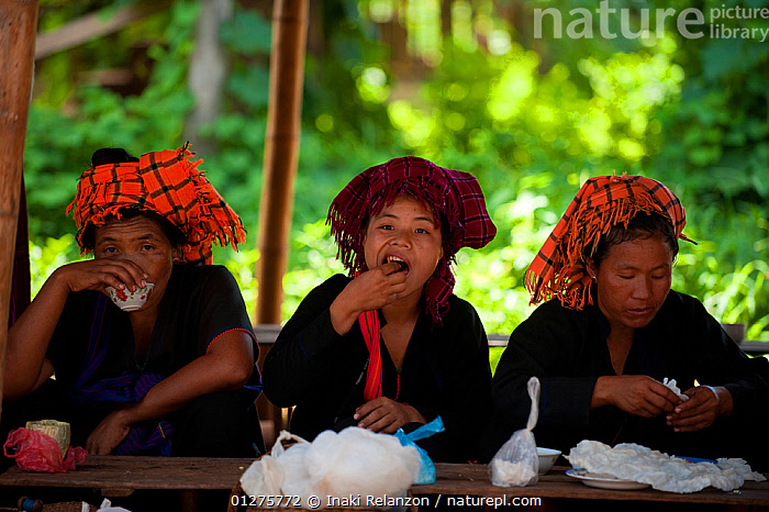 Padaung women eating, in Indein, Shan State, Myanmar, Burma. August 2009  ,  ASIA,BURMA,CULTURES,EATING,FEEDING,FOOD,SHADE,SOUTH EAST ASIA,THREE,TRADITIONS,WOMEN  ,  Inaki Relanzon