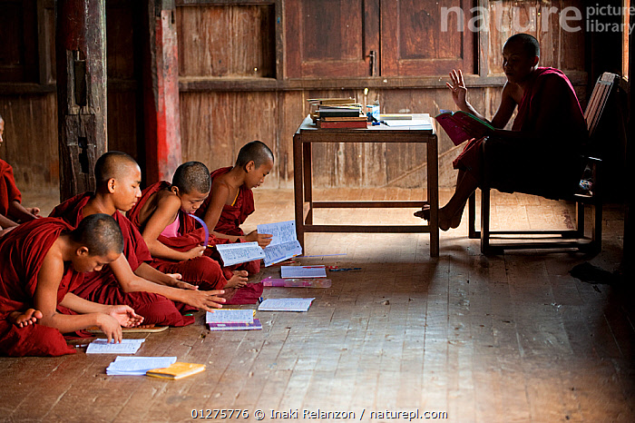 Young Buddhist monks during a lesson, in a buddhist monastery, Inle Lake, Shan State, Myanmar, Burma. August 2009  ,  ASIA,BOYS,BUDDHISM,BURMA,CULTURES,EDUCATION,LEARNING,SCHOOL,SOUTH EAST ASIA,TEACHING,TRADITIONS  ,  Inaki Relanzon