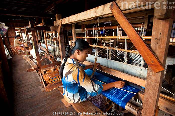Traditional silk factory, Inle Lake, Shan State, Myanmar,  Burma August 2009  ,  FACTORIES, WORKING,ASIA,BURMA,CLOTH,CULTURES,INDUSTRY,SOUTH EAST ASIA,TRADITIONS,WOMEN,WORKING  ,  Inaki Relanzon