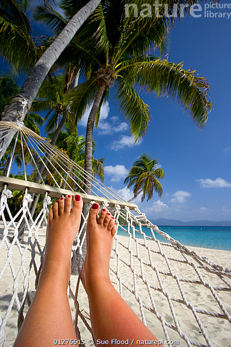 Woman tourist relaxing in hammock on tropical beach, Deadman's Bay, Peter Island, British Virgin Islands, April 2008, Model released  ,  BEACHES,british virgin islands,CARIBBEAN,CATALOGUE2,Caucasian,COASTS,Deadmans Bay,FEET,feet up,hammock,HOLIDAYS,LANDSCAPES,LEGS,LEISURE,one person,painted nails,palm tree,PALMS,PEOPLE,Peter Island,RELAXATION,Relaxing,sandy,SITTING,TOURISM,TROPICAL,vacations,VERTICAL,WEST INDIES,Concepts,Model released  ,  Sue Flood