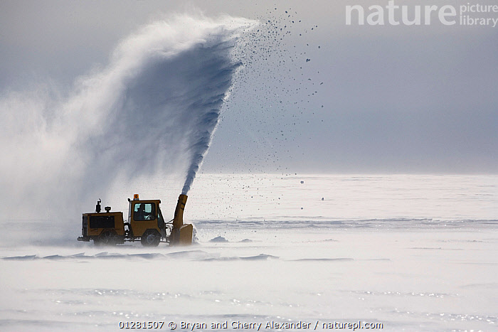 Small snow blower clearing snow off the Blue Ice Runway, Patriot Hills. Antarctica, January 2006., ANTARCTICA,BLOWING,ICE,MAINTENANCE,POLAR,SNOW,SPRAY,VEHICLES, Bryan and Cherry Alexander