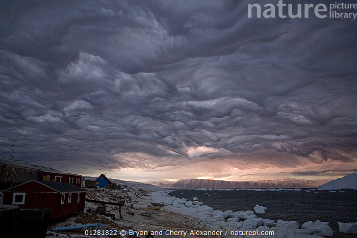 Dramatic 'Undulatus asperatus' cloud formation as a storm builds at dawn over Qaanaaq, Inglefield Bay. Northwest Greenland, September 2008. This cloud formation was first proposed as a new type of cloud in 2009, and if formally recognized will be the first cloud formation named in 60 years.  ,  ARCTIC,ATMOSPHERIC,BEACHES,BUILDINGS,CLOUDS,COASTS,DAWN,DRAMATIC,EUROPE,GLACIAL,GREENLAND,ICE,LANDSCAPES,SEA,SKIES,STORMS,VERTICAL,VILLAGES,WEATHER,CONCEPTS  ,  Bryan and Cherry Alexander