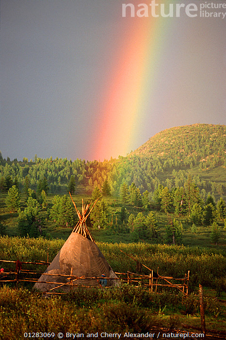 Rainbow over herders' tent in Todzhu. Republic of Tuva, Siberia, Russia, 1998.  ,  ASIA,CAMPING,HOMES,LANDSCAPES,RAINBOWS,RUSSIA,SIBERIA,TENT,TENTS,TUVA,VERTICAL,WOODLANDS,Weather,CIS  ,  Bryan and Cherry Alexander