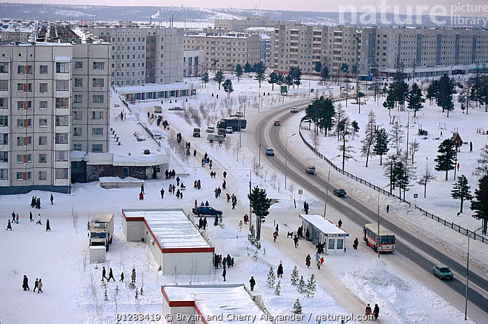 View across main street in the town of Nadym, Western Siberia, Russia, 1997., AERIALS,ARCTIC,ASIA,BUILDINGS,CITIES,HIGH ANGLE SHOT,LANDSCAPES,PEOPLE,ROADS,RUSSIA,SIBERIA,SNOW,TOWNS,TREES,URBAN,VEHICLES,PLANTS, Bryan and Cherry Alexander