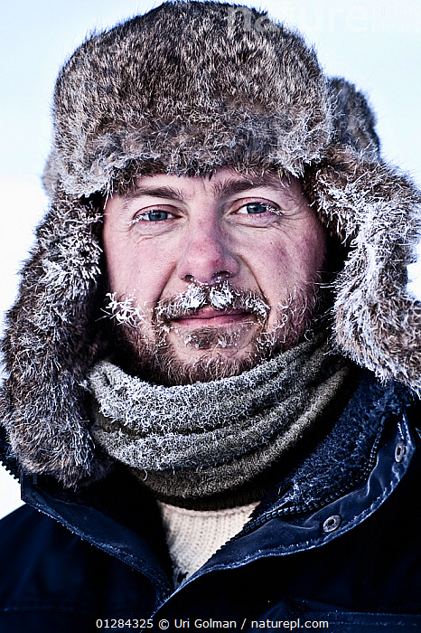 Head portrait of photographer Uri Golman in temperatures of -40 degrees celsius, with frost in his beard. Greenland. March 2009. Model released, ARCTIC,beard,CATALOGUE2,COLD,deerstalker hat,EUROPE,FACES,facial hair,freezing,FROST,Greenland,hat,jacket,looking at camera,MAN,mid adult,one person,portrait,PORTRAITS,scarf,Uri Golman,VERTICAL,WINTER,Weather,Model released, Uri Golman
