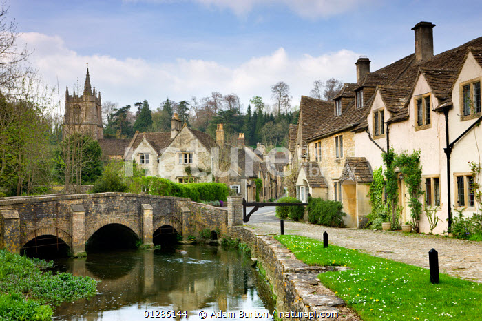 Picturesque Cotswolds village of Castle Combe, Wiltshire, England. Spring - April 2009  ,  BRIDGES,BUILDINGS,CHURCHES,EUROPE,FOOTPATHS,HOUSES,LANDSCAPES,RIVERS,TRADITIONAL,UK,VILLAGES,WATER, United Kingdom  ,  Adam Burton