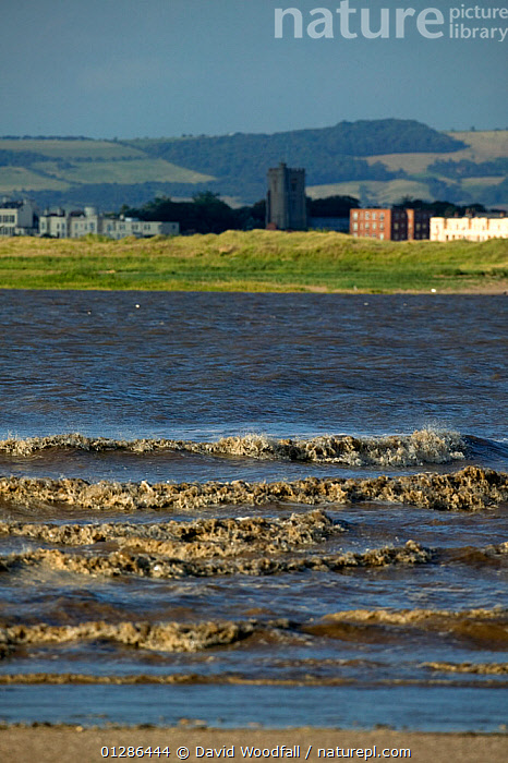 High tide waves Burnham on Sea Severn Estuary Bridgewater Bay NNR Somerset, England, August 2009  ,  COASTS,ESTUARIES,EUROPE,LANDSCAPES,MUD,RESERVE,RIVERS,TIDAL,TIDES,TOWNS,UK,VERTICAL,VILLAGES,WATER,WAVES, United Kingdom  ,  David Woodfall