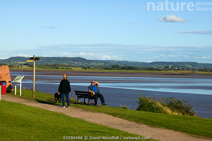 Tourists / local residents enjoying views of the Severn Estuary. England, August 2009  ,  CLIMATE CHANGE,ENVIRONMENTAL,ESTUARIES,EUROPE,HOLIDAYS,LANDSCAPES,LEISURE,PEOPLE,RIVERS,TIDES,TOURISM,UK,VIEWS,WATER,Concepts, United Kingdom  ,  David Woodfall