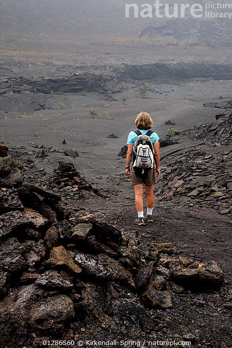 Hiker on the Kilauea Iki Crater trail, Hawai'i Volcanoes National Park. The Big Island of Hawaii, USA, December 2008, model released  ,  GEOLOGY,HIKING,LANDSCAPES,LAVA,LEISURE,NP,PACIFIC ISLANDS,PEOPLE,VERTICAL,VOLCANOES,WALKING,National Park,North America  ,  Kirkendall-Spring