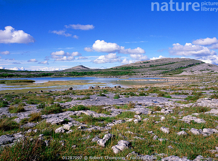 Lough Gealain and limestone pavement, Mullaghmore, Burren National Park, County Clare, Ireland, May 1989 .  ,  EIRE,EUROPE,GEOLOGY,IRELAND,LAKES,LANDSCAPES,NP,RESERVE,National Park  ,  Robert Thompson