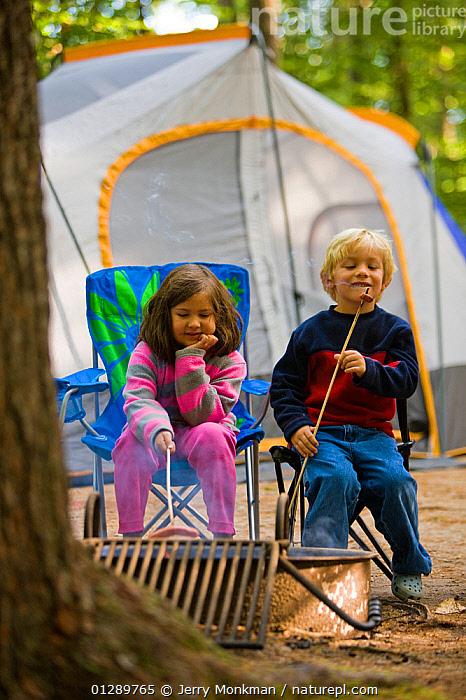 Children roasting hot dogs on a camp fire in Greenfield State Park in Greenfield, New Hampshire, USA, August 2008. Model released.  ,  CAMPING,CHILDREN,COOKING,FRIENDS,HOLIDAYS,NEW ENGLAND,NORTH AMERICA,OUTDOORS,PEOPLE,SIBLINGS,TENT,TENTS,USA,VERTICAL,Concepts  ,  Jerry Monkman