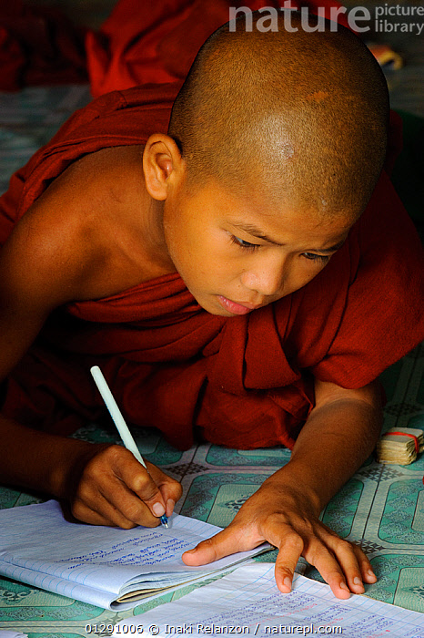 Young buddhist monk studying in a monastery, Taungoo, Central Myanmar (Burma). September 2009  ,  ASIA,asian ethnicity,Boy,boys,buddhism,BURMA,Burmese ethnicity,CATALOGUE2,child,CHILDREN,CLOTHING,CONCENTRATION,Copying,EDUCATION,holding,INDOORS,kneeling,LEARNING,monastery,Monk,monks,one person,pen,PEOPLE,Religion,RELIGIONS,robe,robes,shaved head,SOUTH EAST ASIA,studying,Taaungoo,text book,TRADITIONAL,VERTICAL,writing  ,  Inaki Relanzon