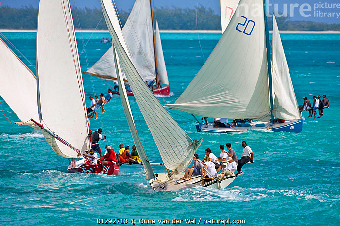 Fleet of boats racing in the Bahamian Sloop regatta, Georgetown, Exumas, Bahamas. April 2009.  ,  CARIBBEAN,COASTS,COURSE,FLEETS,HEELING,HIKING BOARDS ,HIKING OUT,HIKING PLANKS ,PRY,PRYS ,RACES,RACING,SAILING BOATS,SLOOPS,TRADITIONAL,TROPICAL,WEST INDIES,WORKING BOATS,BOATS,SAILING-BOATS ,core collection xtwox  ,  Onne van der Wal