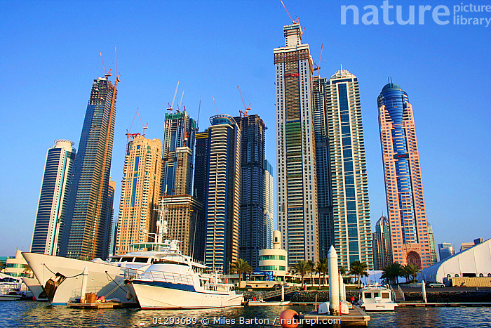 Dubai harbour and city with skyscrapers under construction, Dubai, United Arab Emirates, February 2010, ARABIA,BOATS,BUILDINGS,built up,CATALOGUE2,CITIES,city,COASTS,CONSTRUCTION,dubai,harbour,HARBOURS,LOW ANGLE SHOT,marina,MARINE,MIDDLE EAST,MODERN,Nobody,outdoors,sailing,sailing boat,sky scraper,skyline,UAE,UEA,United Arab Emirates,URBAN,yachy, Miles Barton
