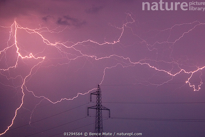 Sky lit by cloud-cloud lightning, with electricity pylon, Hungary, July 2006  ,  bad weather,CATALOGUE2N,danger,EASTERN EUROPE,electricity,electricity pylon,EUROPE,forked lightning,HUNGARY,LANDSCAPES,lightening,LIGHTNING,low angle view,meteorology,NIGHT,Nobody,outdoors,PURPLE,SKIES,SKY,storm,STORMS,Threats,WEATHER  ,  Bence Mate