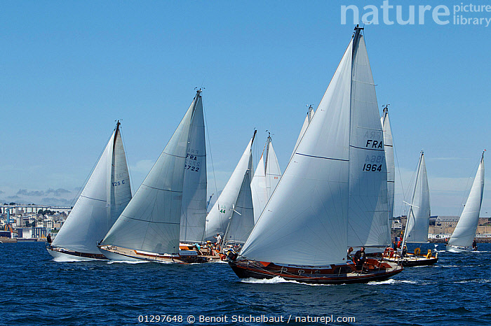 Fleet racing at Brest Classic Week, Brittany, France, July 2010.  ,  BOATS,CLASSICS,COASTS,EUROPE,EVENTS,FLEETS,FORESAILS,FRANCE,MAINSAILS,PROFILE,RACES,RACING,SAILING BOATS,TOWNS,WOODEN,YACHTS,core collection xtwox  ,  Benoit Stichelbaut