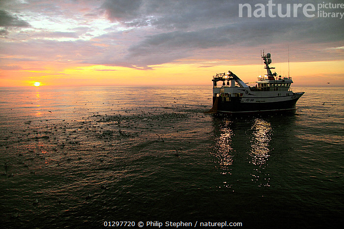 Sunset over trawler on the North Sea, June 2010. Property released.  ,  ATMOSPHERIC,BOATS,EUROPE,FISHING BOATS,NORTH SEA,PROFILE,SKIES,SUNSET,TRAWLERS,WORKING BOATS,WORKING-BOATS  ,  Philip Stephen