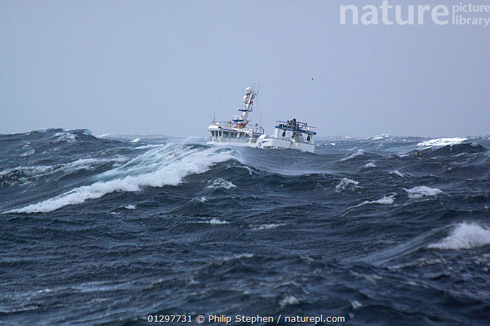 """Trawler """"Ocean Harvest"""" on a stormy North Sea, July 2010. Property released.  ,  BOATS,CHOPPY,EUROPE,FISHING BOATS,HEAVY SEAS,NORTH SEA,OBSCURED,STORMS,TRAWLERS,WEATHER,WORKING BOATS,WORKING-BOATS  ,  Philip Stephen"""