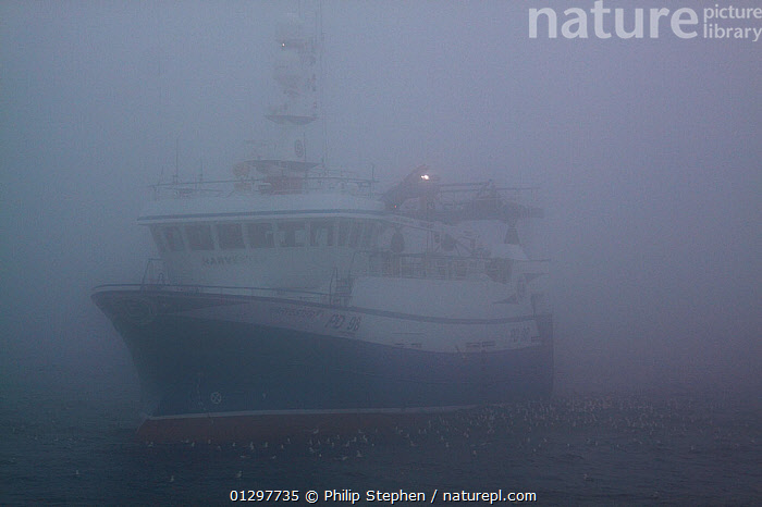 Trawler in mist on the North Sea, July 2010. Property released.  ,  BOATS,EUROPE,FISHERIES,FISHING BOATS,FRONT VIEWS,LIGHTS,MIST,NORTH SEA,OBSCURED,TRAWLERS,WEATHER,WORKING BOATS,WORKING-BOATS  ,  Philip Stephen