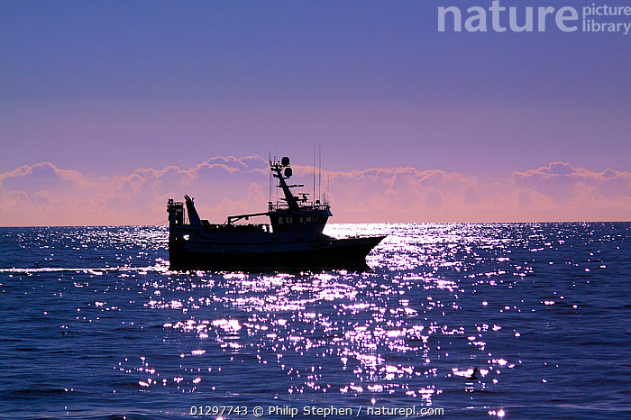 Trawler in low light on the North Sea, July 2010. Property released.  ,  BOATS,DAWN,DUSK,EUROPE,FISHING BOATS,NORTH SEA,PEACEFUL,PROFILE,SILHOUETTES,SILVERY,SUNRISE,SUNSET,TRAWLERS,WORKING BOATS,Concepts,WORKING-BOATS  ,  Philip Stephen