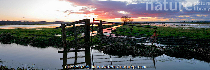 Panoramic view of flooded fields in winter, West Sedgemoor near Langport, Somerset, England UK, 2009 Digital Composite.  ,  COUNTRYSIDE,DAWN,ENGLAND,EUROPE,FIELDS,GATES,LANDSCAPES,PANORAMIC,REFLECTIONS,UK,WATER,WETLANDS,United Kingdom  ,  John Waters