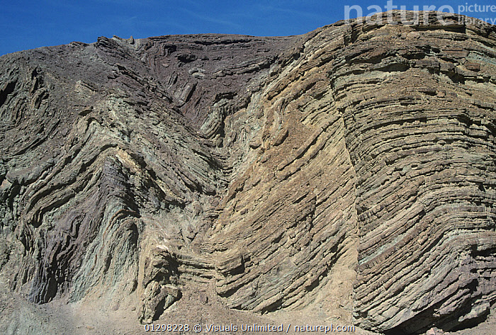Anticline and syncline. Southern California, USA.  ,  ANTICLINE,ANTICLINES,ARID,CA,CALIFORNIA,CLIFF,CLIFFS,COLOR,DEFORMATION,DESERT,DRY,ERODED,ERODING,EROSION,EROSIONAL,FOLD,FOLDED,FOLDING,FOLDS,GEOLOGY,IMAGE,LAYER,LAYERING,LAYERS,MARLI,MILLER,OUTDOORS,ROCK,ROCKS,SEDIMENTARY,STRATA,STRUCTURAL,SYNCLINE,SYNCLINES,USA,North America  ,  Visuals Unlimited