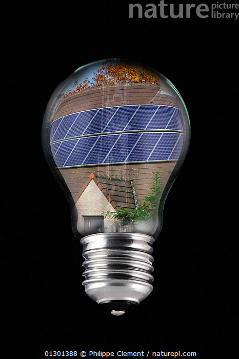 Nature Picture Library - Photovoltaic solar panels on roof of house