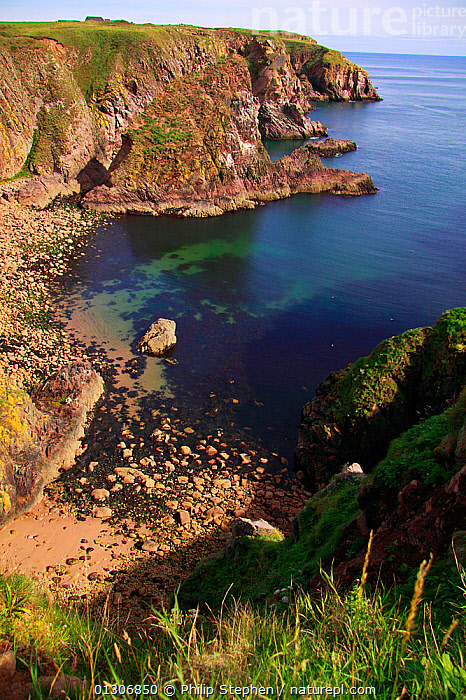 Rocky beach on coastline of Buchan, Aberdeenshire, Scotland, August 2010.  ,  BEACHES,CLIFFS,COASTS,EUROPE,LANDSCAPES,ROCKS,SCOTLAND,UK,VERTICAL,Geology,United Kingdom  ,  Philip Stephen