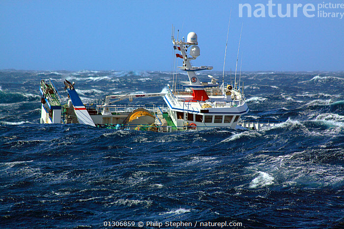 """Fishing vessel """"Ocean Harvest"""" in huge waves on the North Sea, September 2010. Property released.  ,  blue sky,BOATS,CATALOGUE2,clear sky,EUROPE,fishing boat,fishing industry,FISHING BOATS,HEAVY SEAS,horizon,horizon over water,Nobody,North Sea,north sea,OBSCURED,on the move,outdoors,PROFILE,rough sea,seas,STORMS,transportation,TRAWLERS,WAVES,WEATHER,WORKING BOATS,WORKING-BOATS  ,  Philip Stephen"""