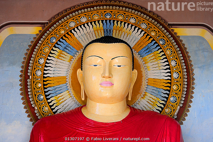 Head of statue at Buddhist monastery of Kelaniya Raja Maha Vihara, Sri Lanka. June 2010.  ,  ART,ASIA,BUDDHISM,INDIAN SUBCONTINENT,SCULPTURES,SRI LANKA,TEMPLES,WORSHIP  ,  Fabio Liverani