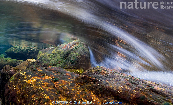 Time-exposure view of flowing freshwater stream  showing water turbulence around rocks, Snowdonia NP, Gwynedd, Wales, UK. December 2009.  ,  EUROPE,FLOW,FRESHWATER,LANDSCAPES,MOVEMENT,NP,PEBBLES,REFLECTIONS,ROCKS,TIME EXPOSURE,UK,WALES,WATER,National Park,United Kingdom  ,  Graham Eaton