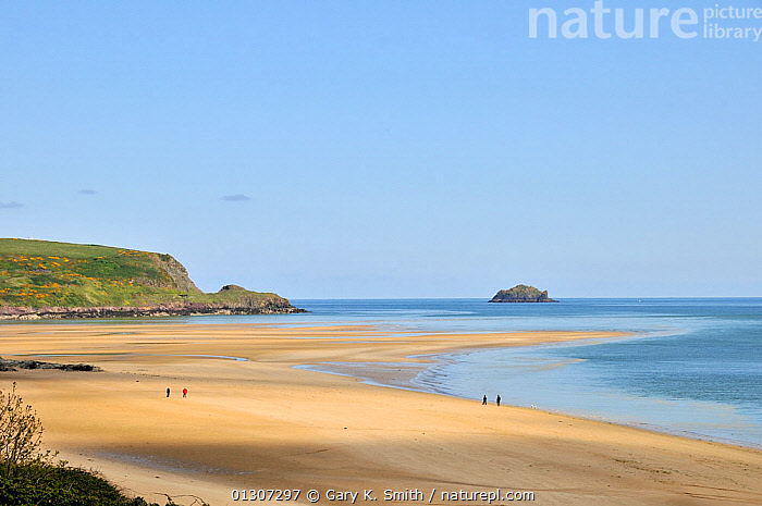 View of Hawkers Cove beach with a few people waking, Camel estuary, North Cornwall, England, UK, May  ,  BEACHES,COASTS,EUROPE,HOLIDAYS,PEOPLE,RECREATIONAL,UK,WALKING,Concepts,United Kingdom  ,  Gary K. Smith