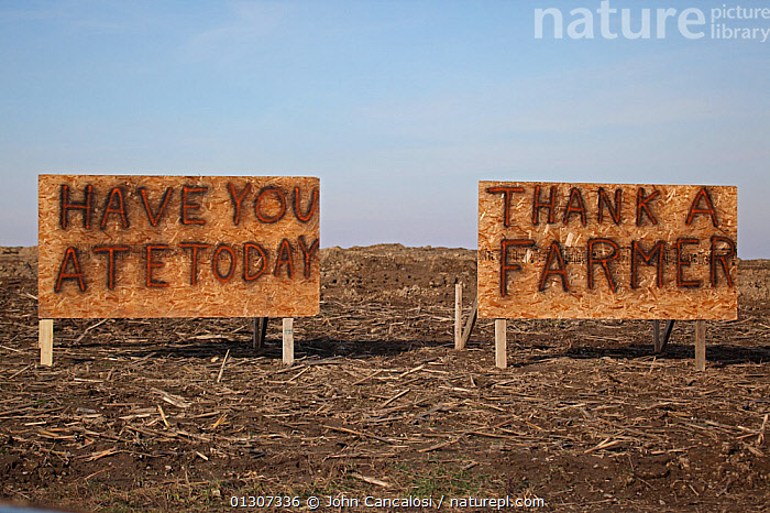 Sign on farm 'Have you ate today - thank a farmer' Upstate New York, USA. January 2000  ,  FARMS,INDUSTRY,MESSAGE,NORTH AMERICA,POLITICAL,SIGNS,USA  ,  John Cancalosi