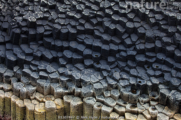 Hexagonal basalt columns, Isle of Staffa, Inner Hebrides, Scotland, UK. June 2010  ,  ABSTRACT,EUROPE,GEOLOGY,LANDSCAPES,MULL,PATTERNS,PROCESSED,ROCKS,SCOTLAND,SHAPES,TESSELLATING,UK,United Kingdom  ,  Alex Hyde