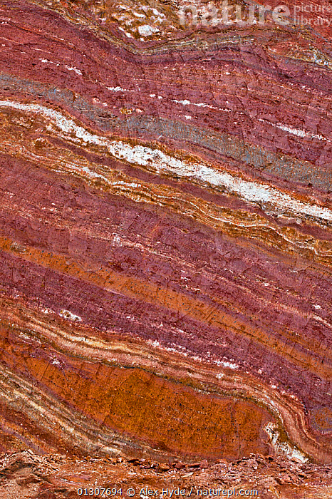 Clay deposits visible as distinct layers, exposed after roadside excavation, Andasibe-Mantadia National Park, Madagascar.  ,  CLOSE UPS,GEOLOGY,MADAGASCAR,NP,RESERVE,STRIATIONS,VERTICAL,National Park  ,  Alex Hyde