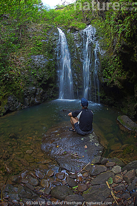 Hiker sitting by waterfall in West Maui Mountains, Hawaii. Model released., ESCAPISM,HAWAII,HIKING,LANDSCAPES,MAN,PACIFIC ISLANDS,PEOPLE,RESTING,RIVERS,VERTICAL,WATERFALLS,CONCEPTS,USA,North America, David Fleetham