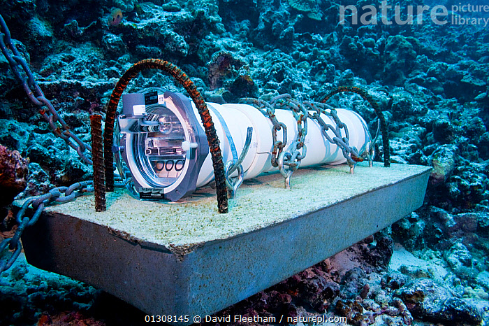 Sound recording device from University of Hawaii anchored on reef off Hawaii., ANCHORED,AUDIO,CORAL REEFS,HAWAII,MARINE,PACIFIC,PACIFIC ISLANDS,RESEARCH,SCIENCE,TROPICAL,UNDERWATER,USA,North America, David Fleetham