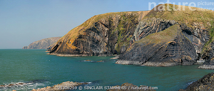 Panoramic view of coastline at Penderi Cliffs nature reserve, showing sediment layers which are devoid of fossils, Ceredigion, West Wales, UK, April 2010, CLIFFS,DRAMATIC,EUROPE,LANDSCAPES,PANORAMIC,RESERVE,SEA,UK,WALES,WATER,Geology,CONCEPTS,United Kingdom, SINCLAIR STAMMERS