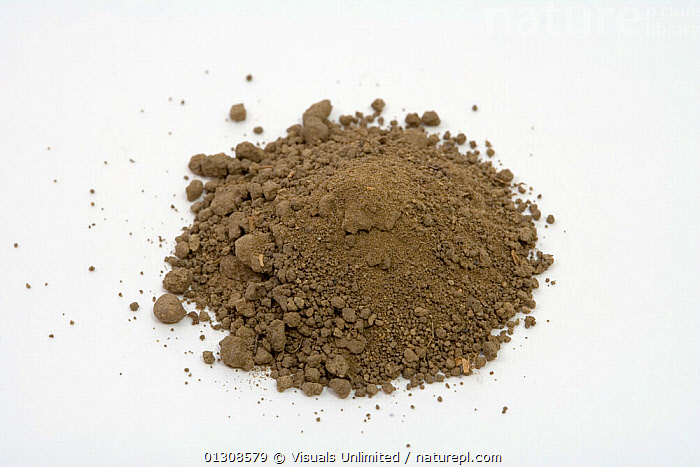 Loam Soil  ,  ANGLE,BROWN,COLOR,GEOLOGY,HIGH,LOAM,PILE,SHOT,SOIL,STUDIO,WHITE  ,  Visuals Unlimited