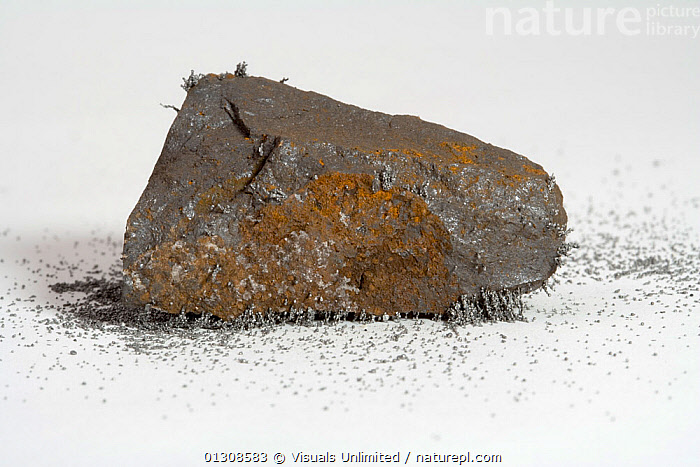 Lodestone, CLOSE UP,COLOR,GEOLOGY,HAND,LODESTONE,MAGNETIC,MAGNETISM,MAGNETITE,MINERAL,OBJECT,ROCK,SCIENTIFICA,SINGLE,STUDIOSHOT,WHITE, Visuals Unlimited