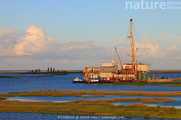 Oil drilling rig in Mississippi River delta salt marsh. Plaquemines Parish, Louisiana. USA, July 2010., BUILDINGS,CRUDE OIL,DEVELOPMENT,drilling,ENERGY,FUEL,INDUSTRY,LANDSCAPES,NORTH AMERICA,OIL,petroleum,platform,RIVERS, Gerrit Vyn