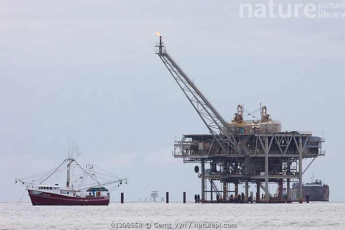 Natural gas platform and Shrimp boat skimmer in Mobile Bay. Baldwin County, Alabama. USA, June., BOATS,DEVELOPMENT,drilling,ENERGY,FISHING,FUEL,gas,INDUSTRY,LANDSCAPES,NORTH AMERICA,rig,structures,USA, Gerrit Vyn