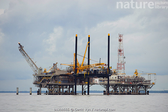 Natural gas rig in Mobile Bay. Mobile County, Alabama, USA, July 2010., BUILDINGS,COASTS,ENERGY,extraction,FUEL,INDUSTRY,LANDSCAPES,NORTH AMERICA,OCEANS,PLATFORMS,rig,sea,structures,USA, Gerrit Vyn