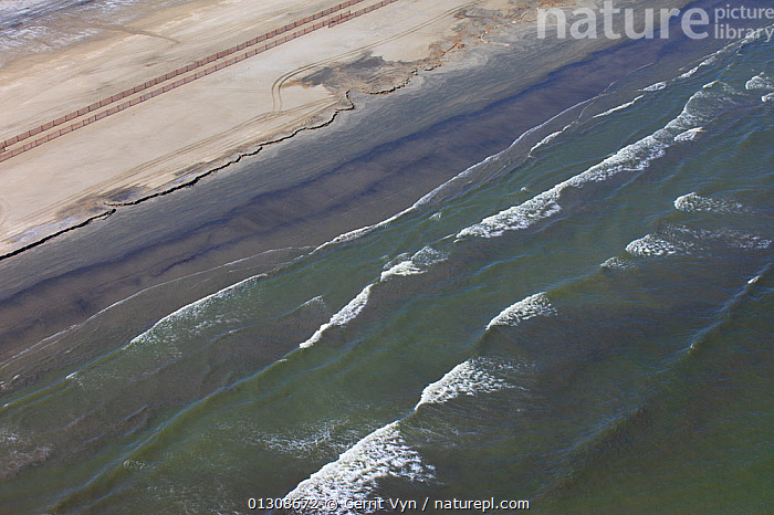 Aerial view of an oil stained beach, contaminated by the BP Deepwater Horizon oil leak in the Gulf of Mexico. Grand Isle, Jefferson Parish, Louisiana, USA, July 2010., AERIALS,BEACHES,British Petroleum,COASTS,contamination,CRUDE OIL,DEEPWATER HORIZON,ENVIRONMENTAL,LANDSCAPES,NORTH AMERICA,OIL,POLLUTION,slick,spill,USA,WAVES, Gerrit Vyn