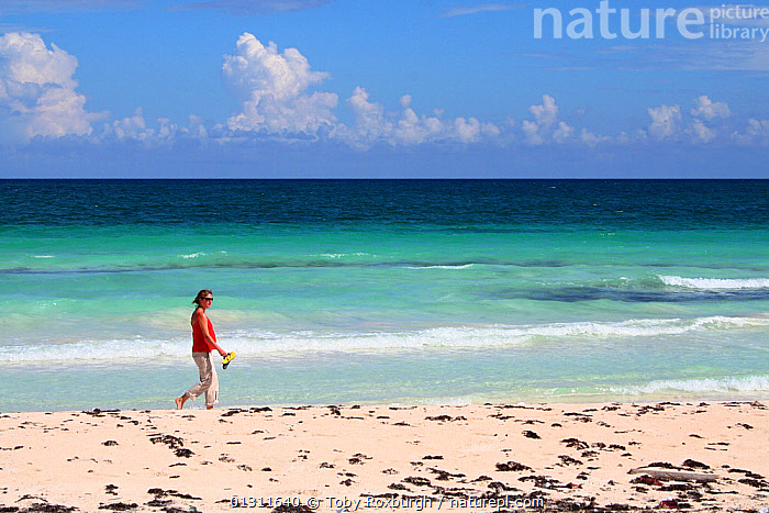 Woman walking on beach near Tulum, Yucatan, Mexico, October 2006. Model released., ASPIRATIONS,BEACHES,CARIBBEAN,CENTRAL AMERICA,COASTS,CONCEPTS,HOLIDAYS,LANDSCAPES,LEISURE,MEXICO,PEOPLE,TROPICAL,TURQUOISE,WOMAN,West Indies,CENTRAL-AMERICA,core collection xtwox, Toby Roxburgh