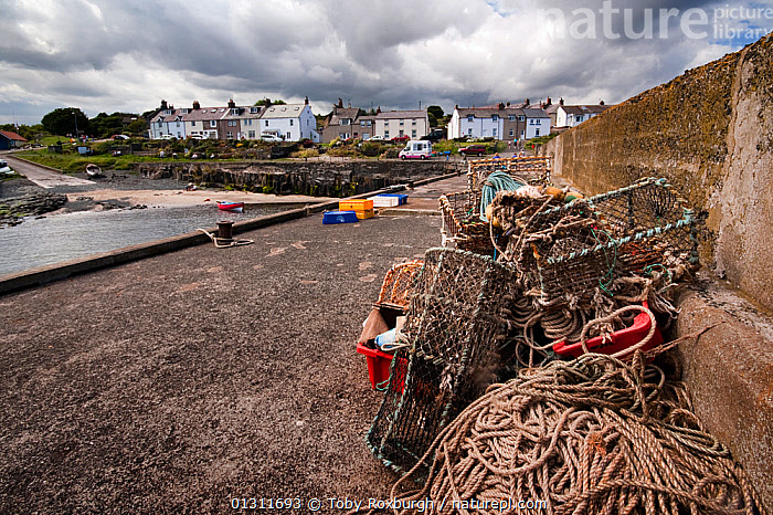 Craster Harbour, Northumberland Coast Area of Outstanding Natural Beauty (AONB), England, July 2010., BUILDINGS,COASTS,ENGLAND,EQUIPMENT,EUROPE,FISHING,HARBOURS,RESERVE,ROPES,TOWNS,UK,BOAT-PARTS,United Kingdom, Toby Roxburgh