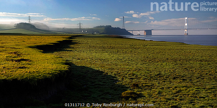 Dawn view along saltmarsh on the River Severn with its characteristic eroded cliff features, South Gloucestershire, England, May 2010.  ,  BRIDGES,ENGLAND,EROSION,EUROPE,LANDSCAPES,MARSHES,RIVERS,SALTMARSHES,UK,Wetlands,United Kingdom  ,  Toby Roxburgh