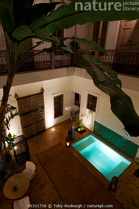 Inner courtyard of a traditional Morrocan Riad, Marrakech, February 2010., AFRICA,ARCHITECTURE,BUILDINGS,HOLIDAYS,INTERIORS,LUXURY,MOROCCO,NORTH AFRICA,PLANTS,POOL,POOLS,TRADITIONAL,VERTICAL,Concepts,NORTH-AFRICA, Toby Roxburgh